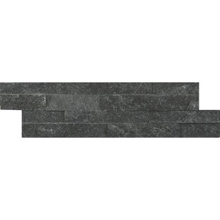 Coal Canyon Random Size Natural Stone Splitface Tile in Black