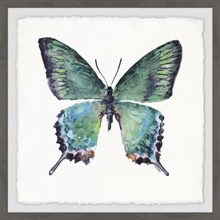 c1aa29183e058 'Watercolor Butterfly' Framed Watercolor Painting Print