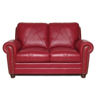 Barnstormer Leather Loveseat by Red Barrel Studio