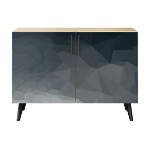 Neff 2 Door Cabinet by Brayden Studio