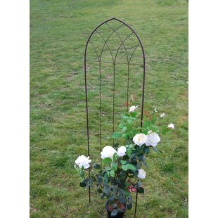 Hepner Plant Support Image
