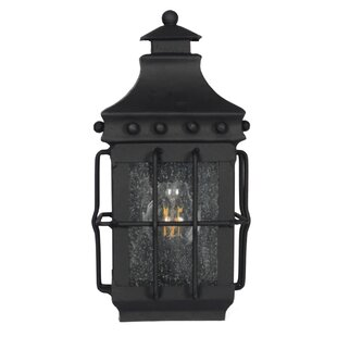 Segera 1-Light Outdoor Wall Lantern by Darby Home Co