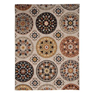 Great choice Medallion Brown Area Rug By Andover Mills