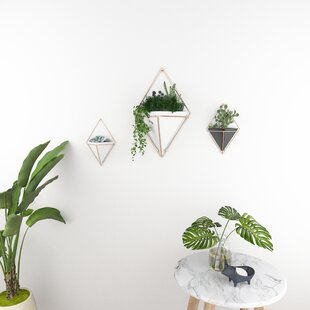 Jasmine Metal Wall Planter By Norden Home