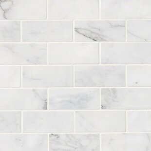 Calacatta Cressa Honed 2 X 4 Marble Subway Tile In White
