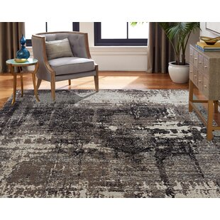 Rawtenstall Black/Gray Indoor/Outdoor Area Rug