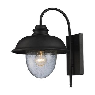Gracie Oaks Ying 1-Light Outdoor Barn Light