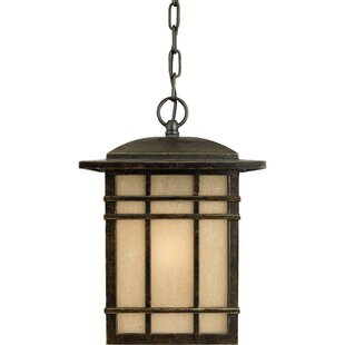 Three Posts Woodard 1-Light Outdoor Hanging Lantern in Imperial Bronze