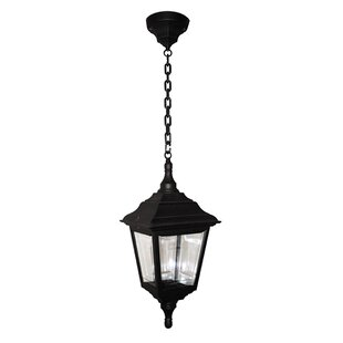 Victor 1 Light Outdoor Hanging Lantern Image