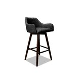 Vicky Swivel Bar & Counter Stool by Ivy Bronx