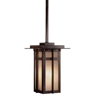 Great Outdoors by Minka Delancy 1-Light Outdoor Hanging Lantern