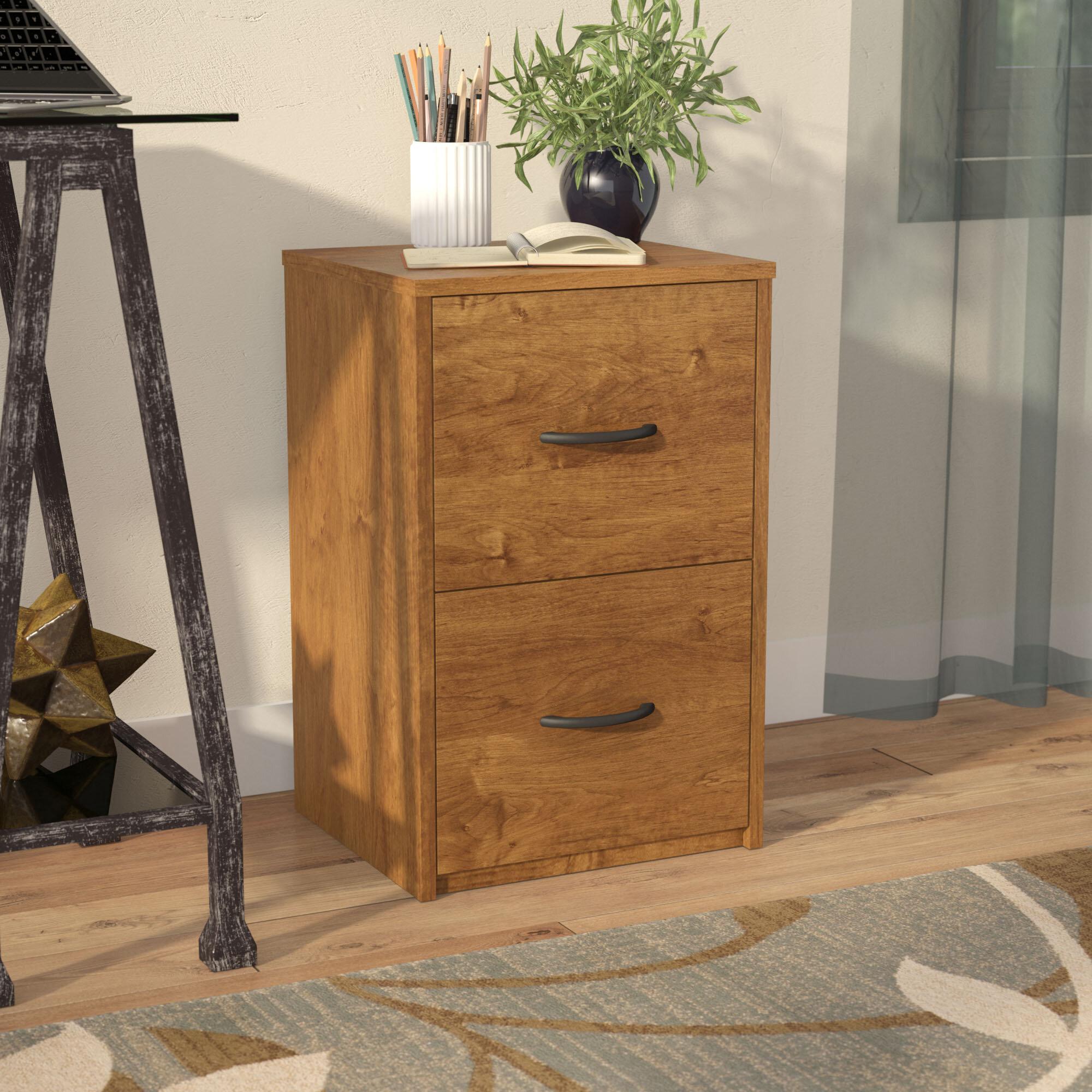 Symple Stuff 2 Drawer File Cabinet Reviews Wayfair