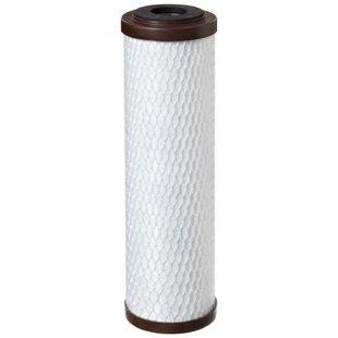 Pentek Coconut Carbon Water Filter