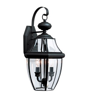 Dashner 2-Light Outdoor Wall Lantern