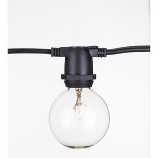 Aspen Brands Global 65 Light Globe String Light