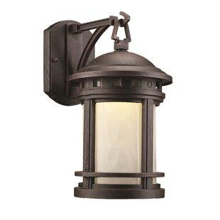 Ashberry 1-Light Outdoor Wall Lantern