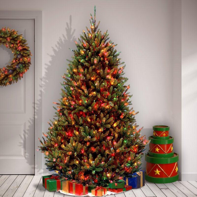 Natural Fraser 7.5u0027 Green Fir Artificial Christmas Tree With 1000 Multi Colored  Lights
