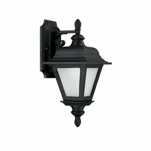 Charlton Home Webber 1-Light Outdoor Wall Lantern