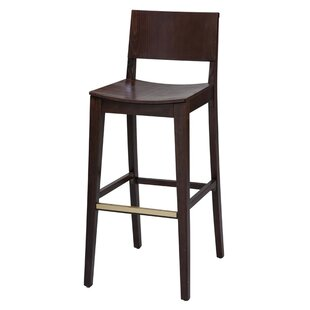 Parker Bar Stool (Set of 2)