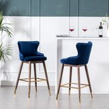 Villanueva Counter & Bar Stool (Set of 2) by Everly Quinn