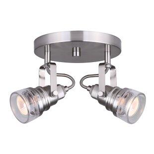 Canarm Brock 2-Light Spot Light