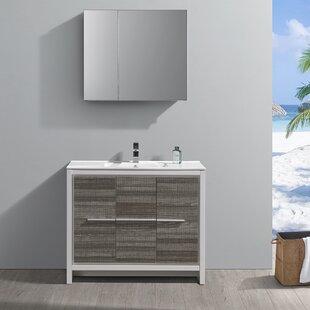 Trieste Allier Rio 39 Single Bathroom Vanity Set with Mirror by Fresca