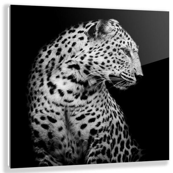 Two Palms Art Bazaar 'braam' Photographic Print On Plaque & Reviews by Two Palms Art Bazaar