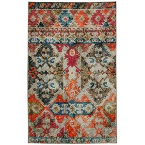 grayorange area rug