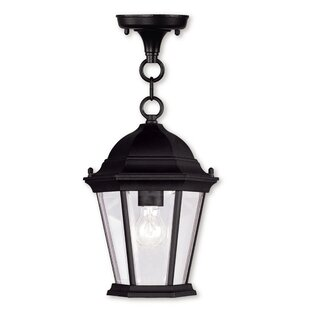 Darby Home Co Busse 1-Light Outdoor Hanging Lantern