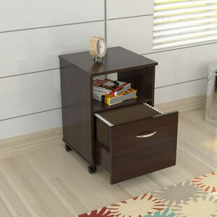 Bayswater Commercial 1 Drawer Mobile Filing Cabinet by Ebern Designs