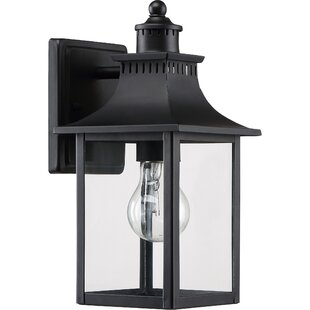 Caswell 1-Light Outdoor Wall Lantern