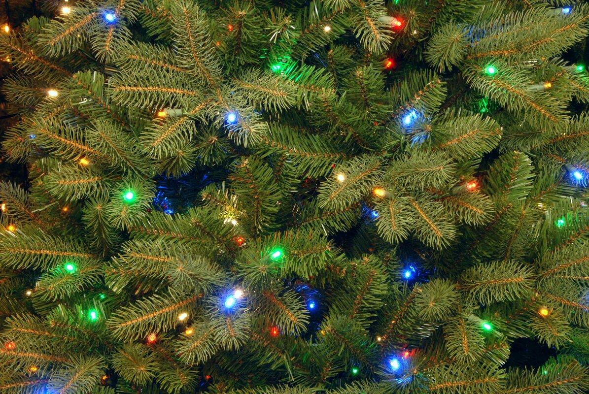 The Holiday Aisle Douglas Fir 7.5\' Green Downswept Artificial ...