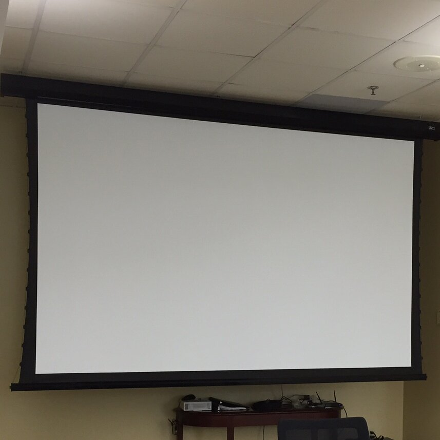 Elite Screens Cinetension2 White Electric Projection Screen Wayfair