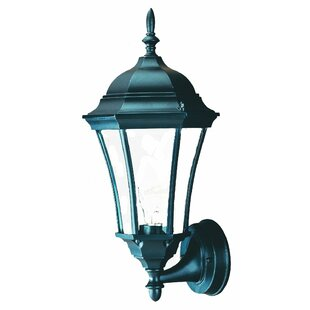 Francesca Lane 1-Light Outdoor Sconce