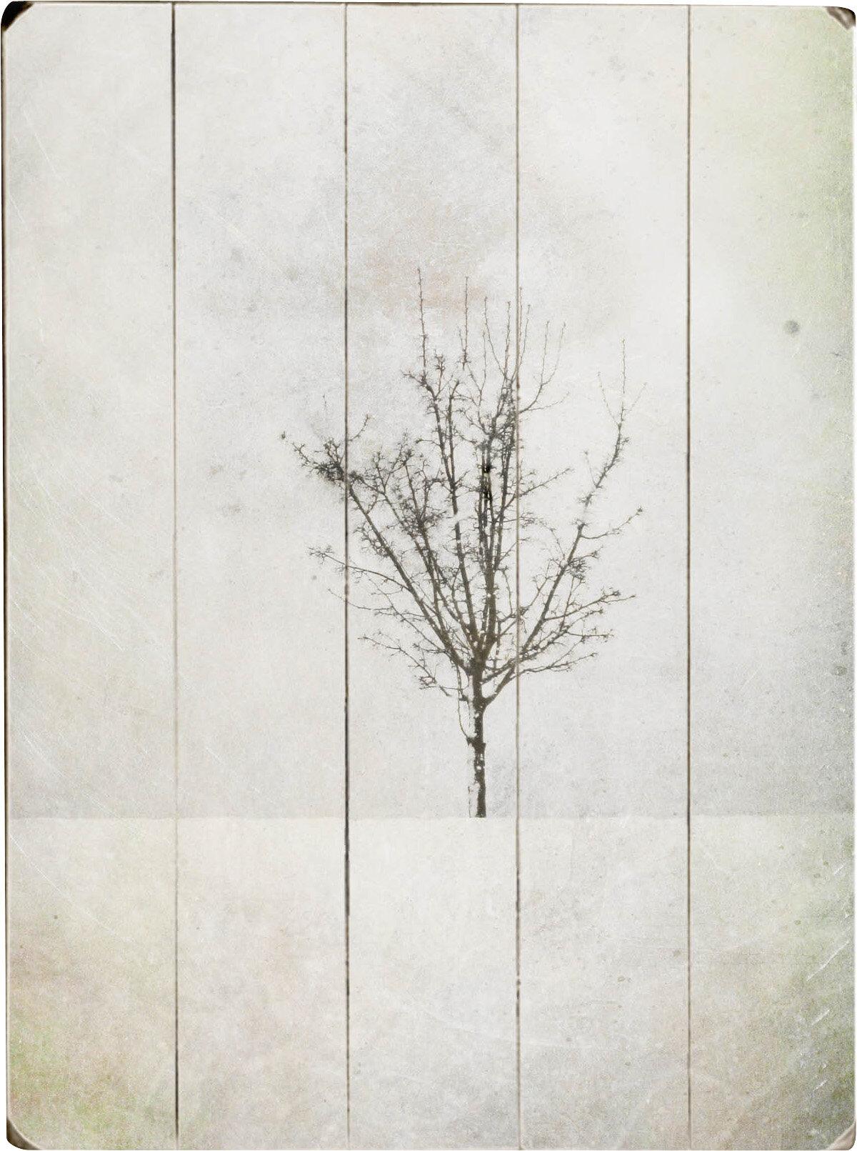 Artehouse Llc Solitary Graphic Art Multi Piece Image On Wood Wayfair