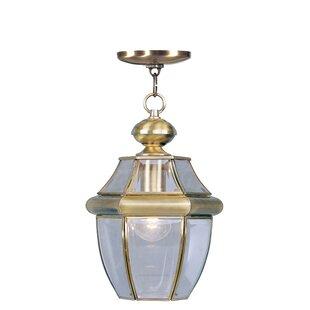 Antique Brass Outdoor Hanging Lights You\'ll Love | Wayfair