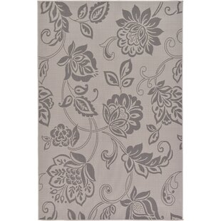 Beaver Creek Gray Indoor/Outdoor Area Rug