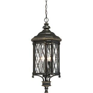 Astoria Grand Bayard 4-Light Outdoor Hanging Lantern