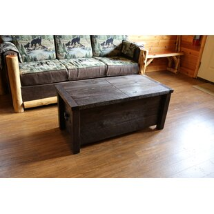 Bechtold Coffee Table with Storage