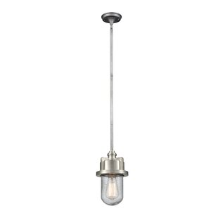 Breakwater Bay Robertsdale 1-Light Bulb P..