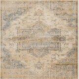 Oriental Weavers Sphinx Rugs Wayfair
