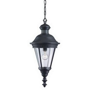 Breeding 1-Light Outdoor Hanging Lantern by Canora Grey
