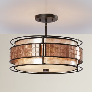 World Menagerie Bashir 3-Light Semi Flush Mount