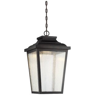 Mayhugh 1-Light LED Outdoor Hanging Lantern