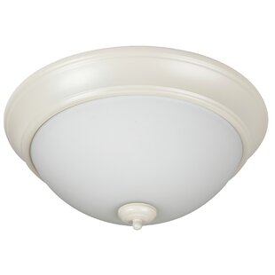 Charlton Home Byron 2-Light Flush Mount