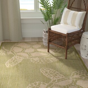 Lambert Seaturtle Green Indoor/Outdoor Area Rug