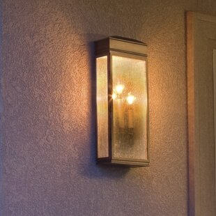 Barrie 3-Light Outdoor Flush Mount By Darby Home Co