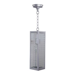 Calne 1-Light Outdoor Pendant