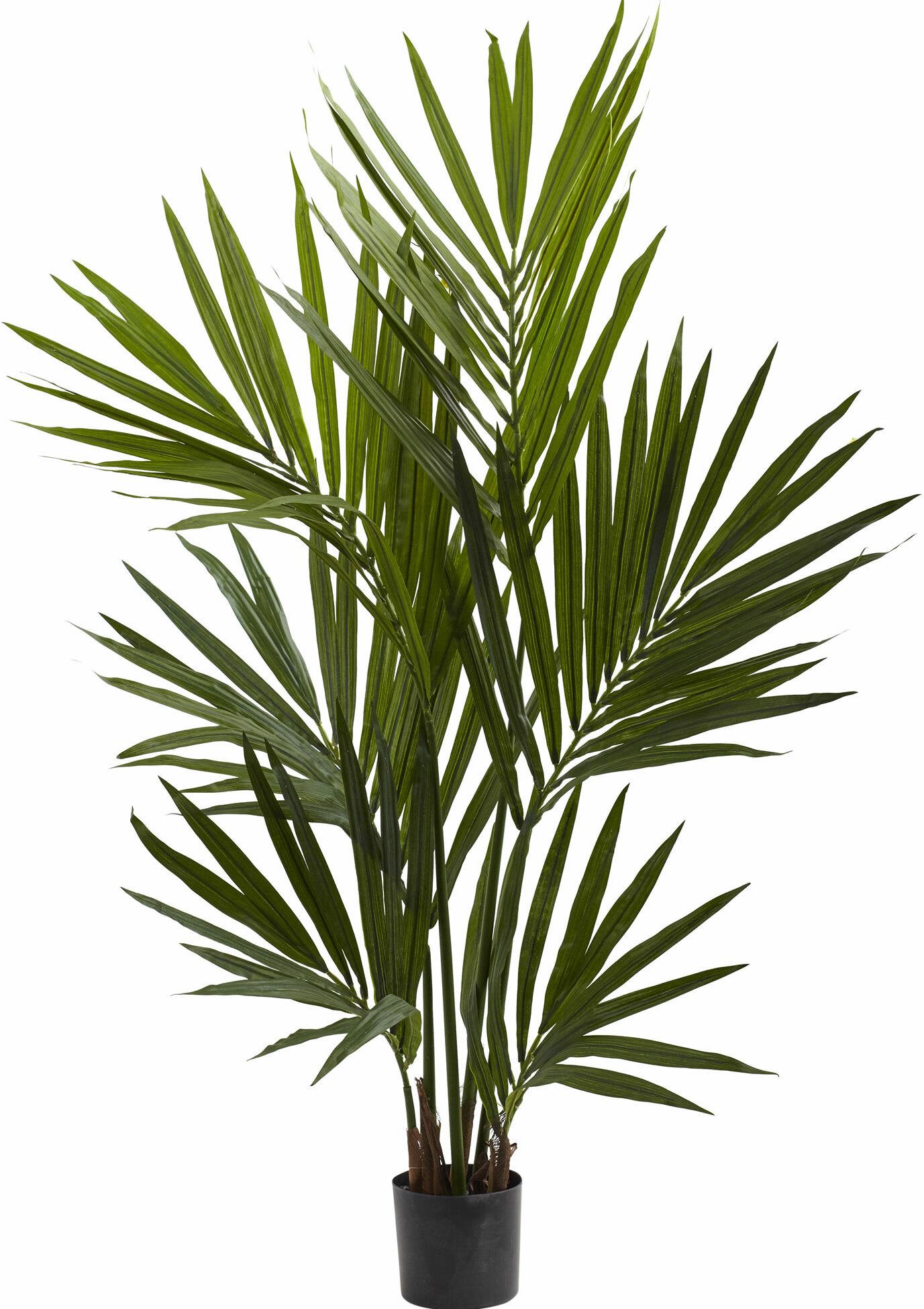 Nearly Natural Kentia Palm Silk Tree in Pot & Reviews | Wayfair on