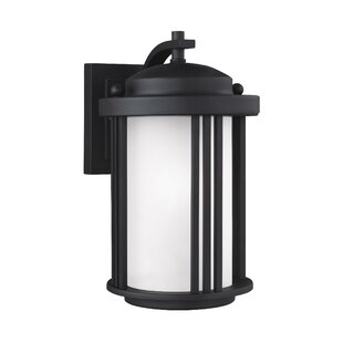 Darby Home Co Dunkley 1-Light Outdoor Wall Lantern